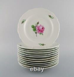 12 antique Meissen dinner plates in hand-painted porcelain with pink roses