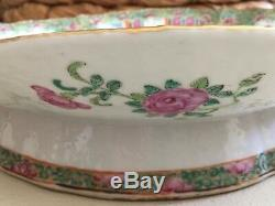 Antique 1800s Hand Painted Beetles Chinese Rose Medallion Gold Large Platter