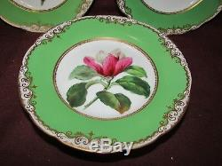 Antique Old Paris Hand Painted Floral Dishes Virginia Bluebell and Roses