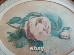 Antique Oval Edwardian Picture Gilt Wooden Frame Hand Tinted Print Cherub & Rose