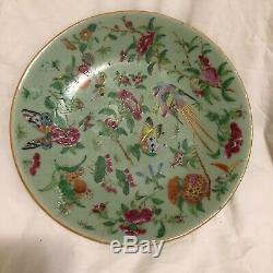Antique Rose Famille Chinese Cantonese Porcelain Plate Hand Painted Qing