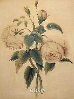 Antique Victorian Cabbage Roses Botanical Watercolor Painting Shadow Box Frame