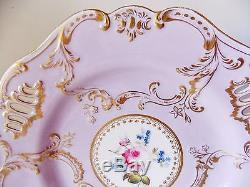 Gorgeous Rare Early Antique Coalport English Hand Painted Porcelain Plate Rose