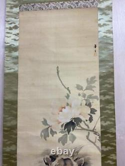 JAPANESE PAINTING HANGING SCROLL From JAPAN LION ANTIQUE Old ART Rose e175