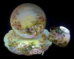 Rare Signed 1917 Sherratts Hand Painted Wild Rose 18 Piece Limoges Set Gold Trim